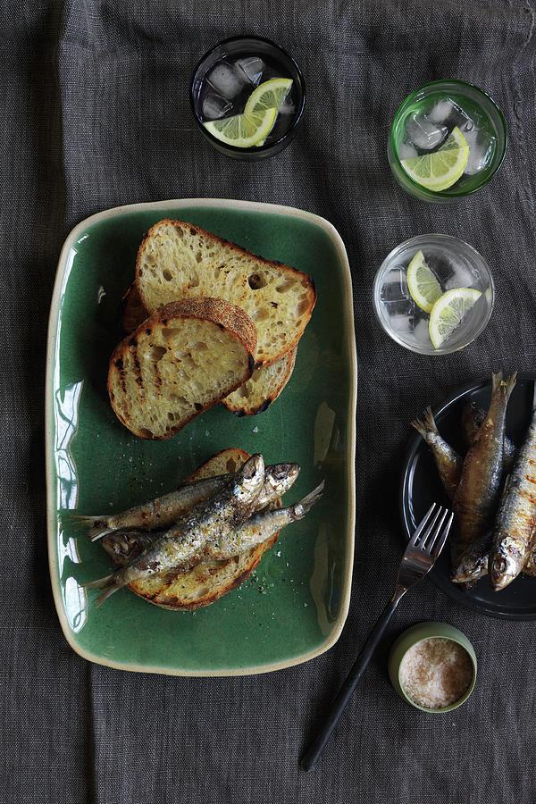 Easy Lunch Photograph by Jason Loucas