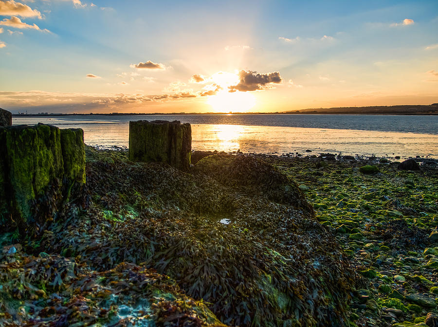 Photograph Photograph - Ebb Tide At Sunset by Trevor Wintle
