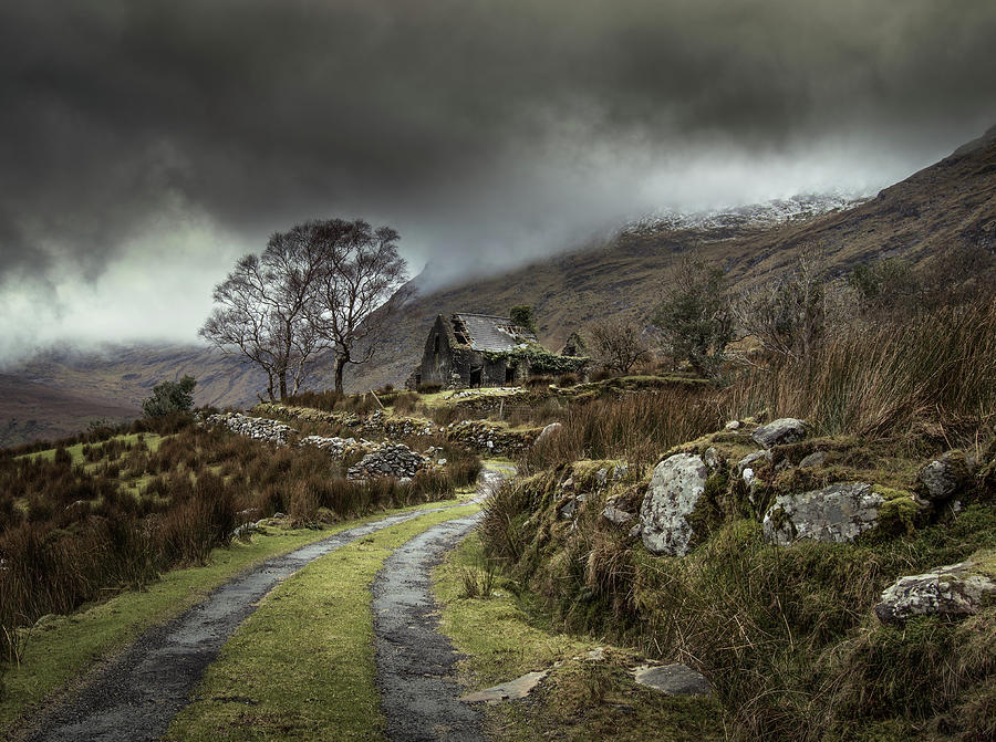 Torn Photograph - Echoes Of The Past by David Ahern