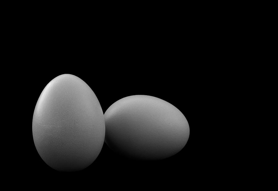 Egg Play Photograph