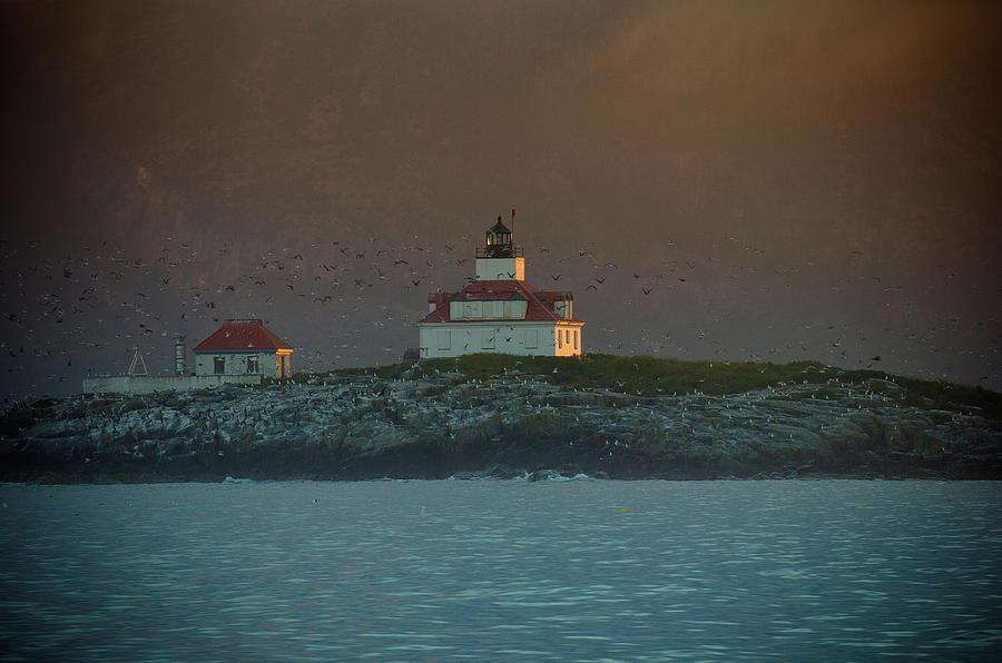 Acadia National Park Photograph - Egg Rock Island Lighthouse by Sebastian Musial