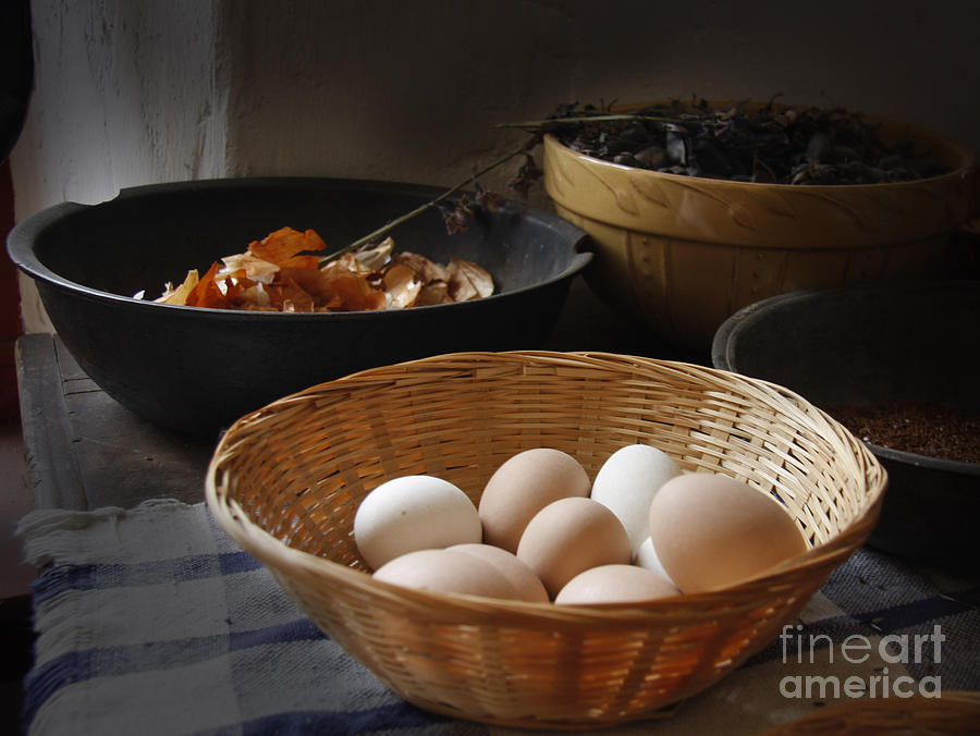 Eggs by Bobbie Turner