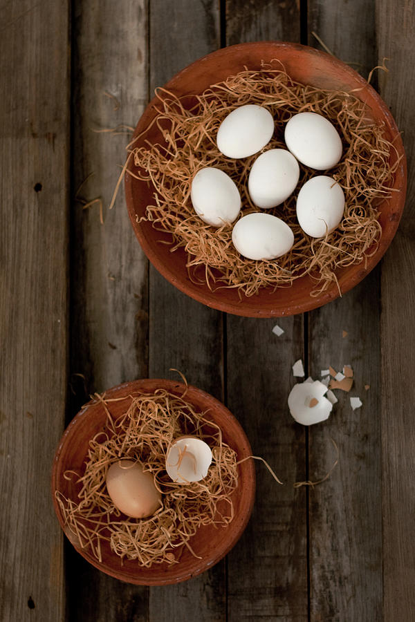 Eggs In Hay Photograph by Ashasathees Photography