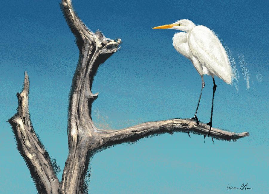 Egret Digital Art - Egret by Aaron Blaise
