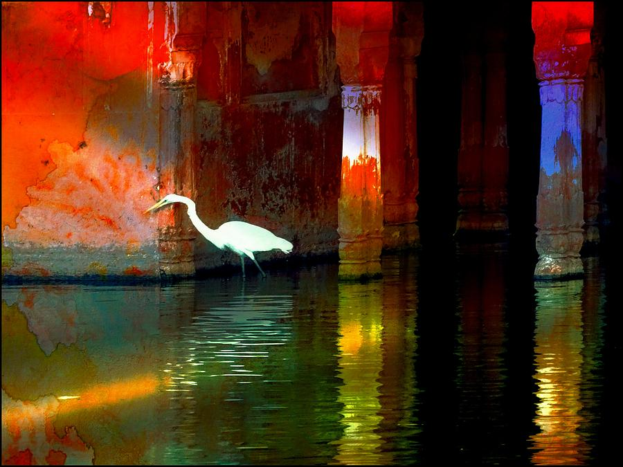 Egrets have a PALACE for Nesting by Sue Jacobi