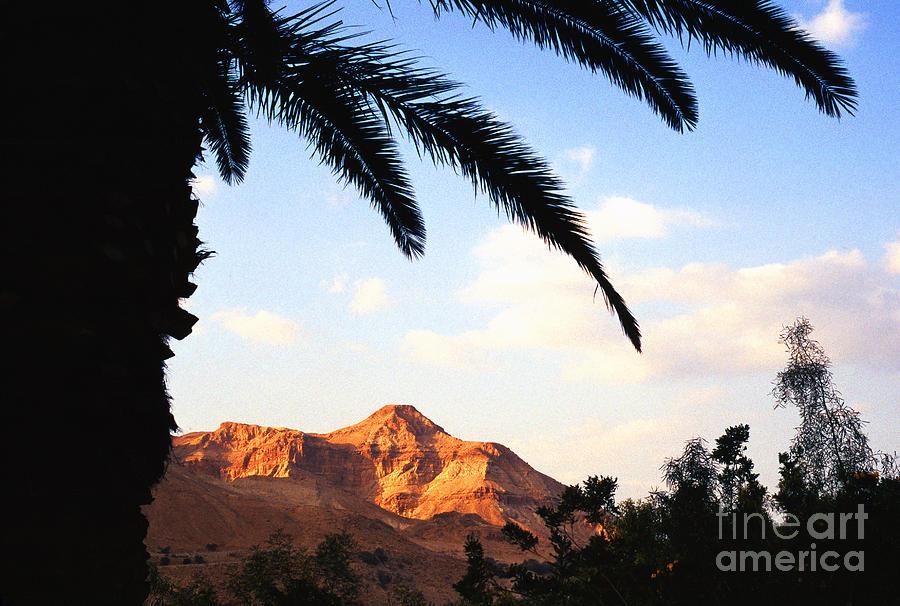 Ein Gedi Photograph - Ein Gedi Oasis Israel by Thomas R Fletcher