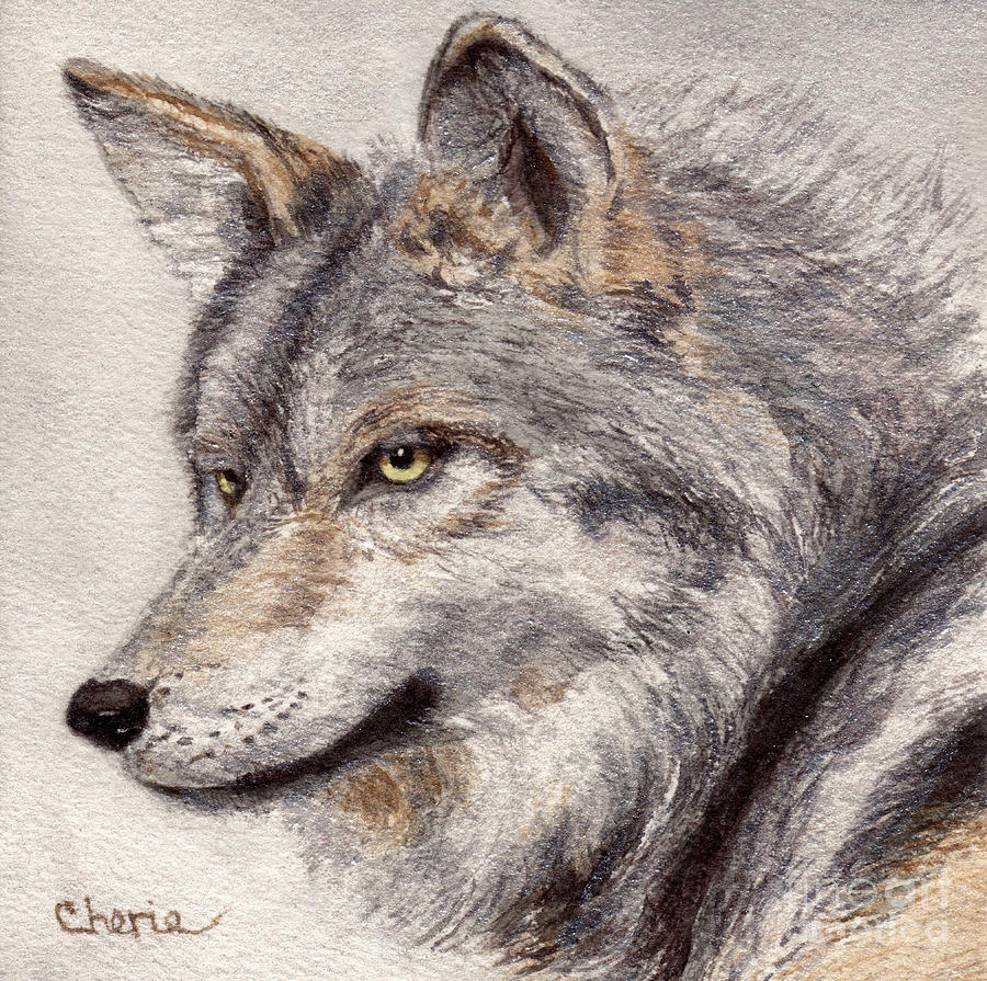 Wolf Painting - El Lobo by Vikki Wicks