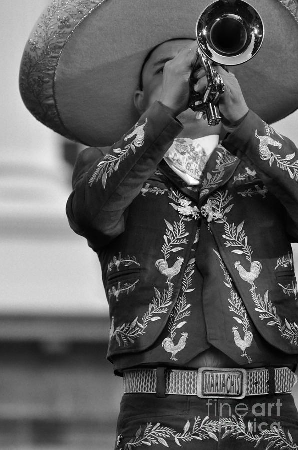 Mariachi Photograph - El Orgullo de Un Mariachi by Kristine Celorio