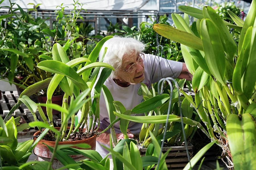 Community Photograph - Elderly Woman Examining Plants by Jim West