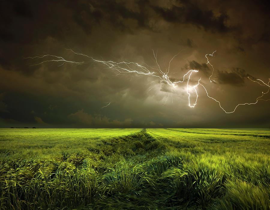 Electrically In Summer Photograph By Franz Schumacher