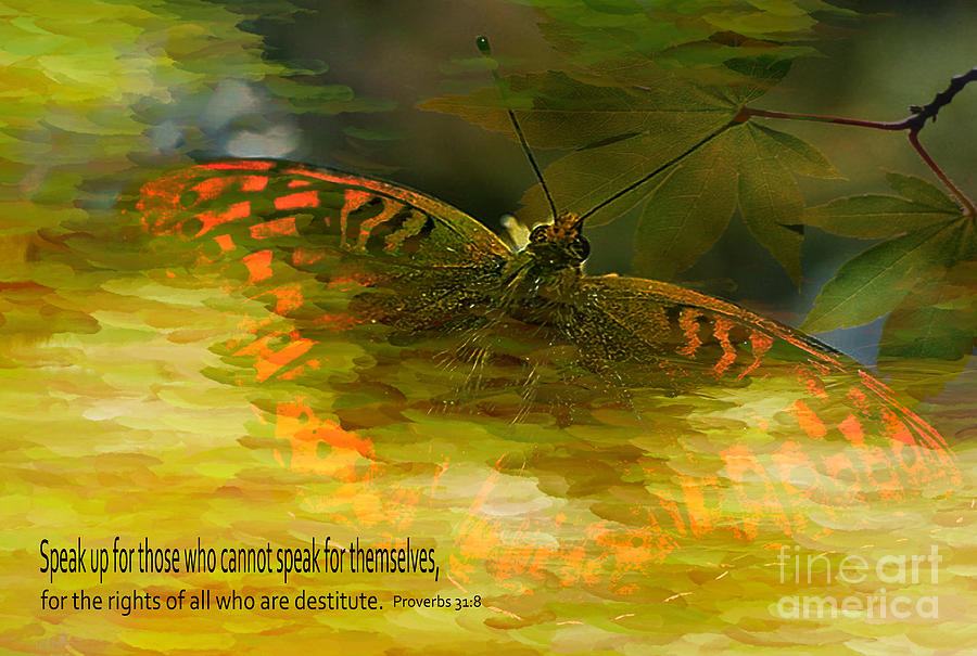 Butterfly Photograph - Electrifying Scripture Art by Beverly Guilliams