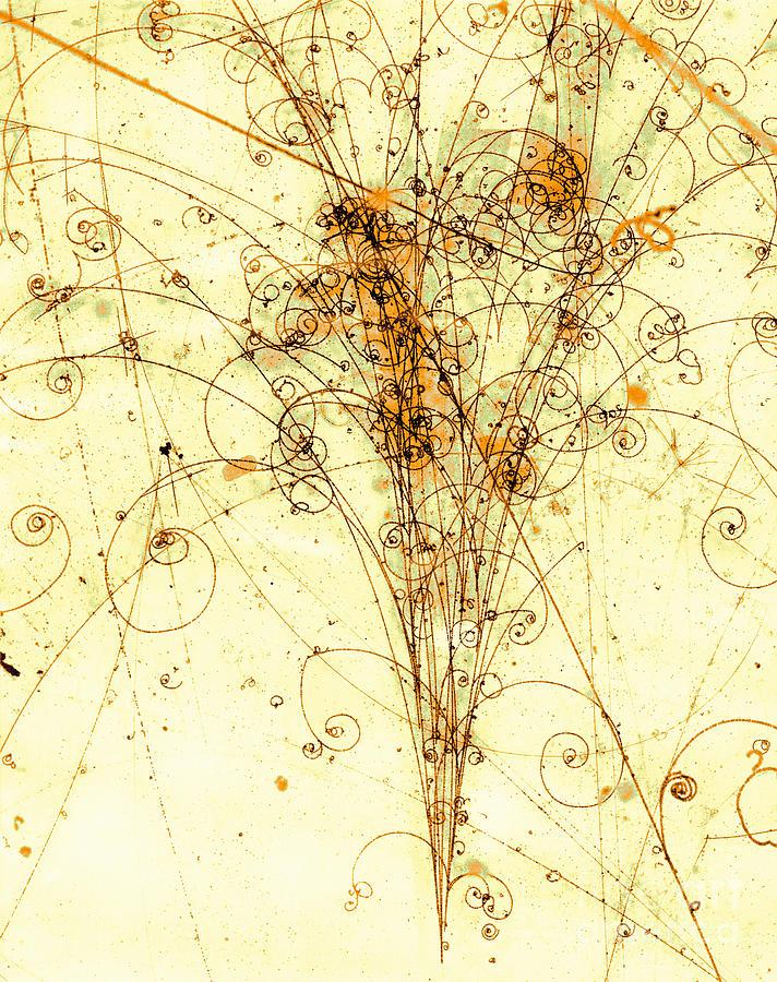Electron Photograph - Electron Positron Particle Shower by Spl