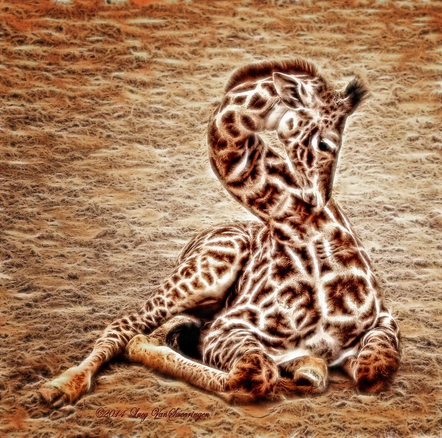 Zoo Photograph - Elegant Infant by Lucy VanSwearingen