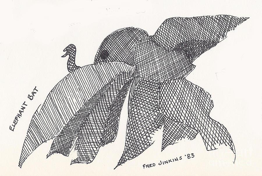 Bat Drawing - Elephant Bat by Fred Jinkins