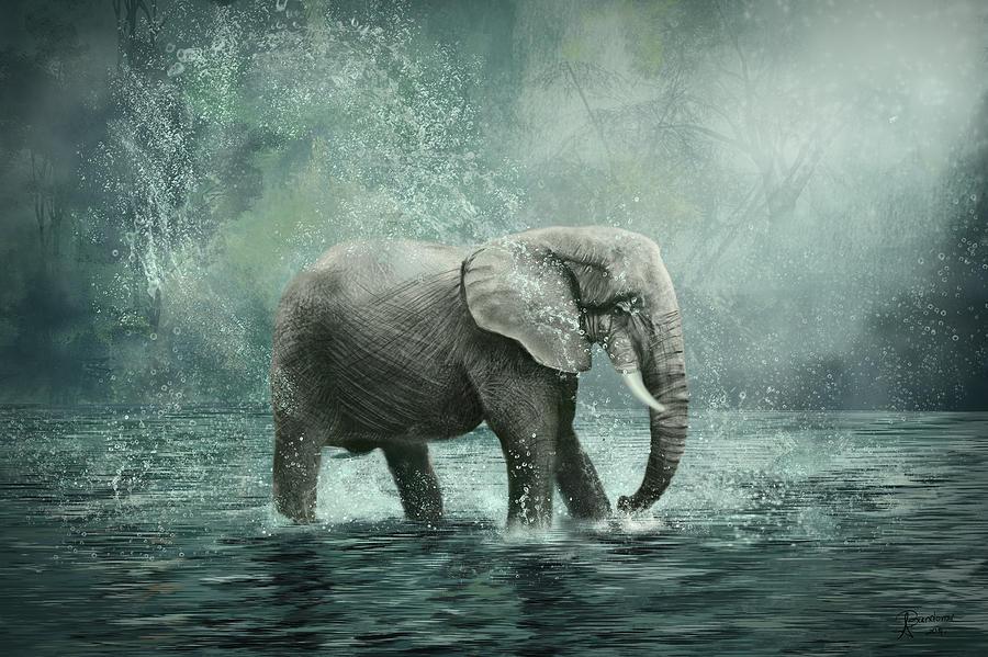 elephant wallpaper iphone 5