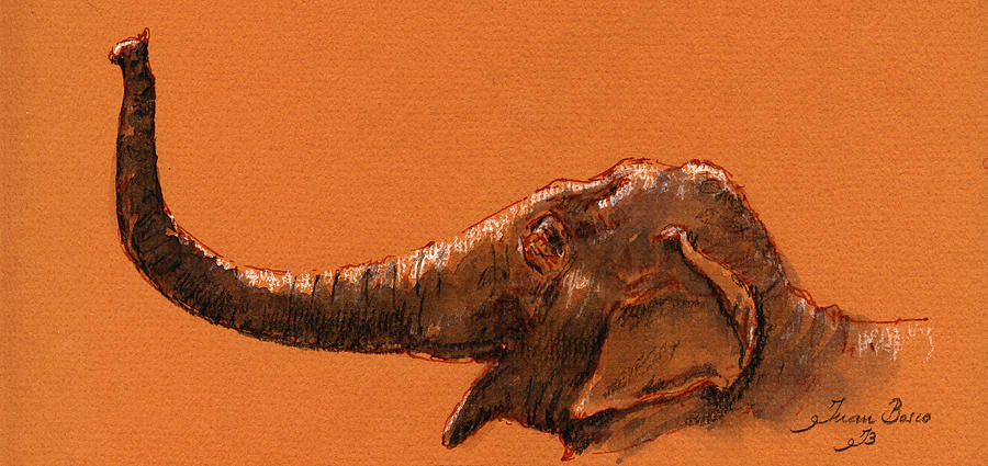 Asiatic Painting - Elephant indian by Juan  Bosco