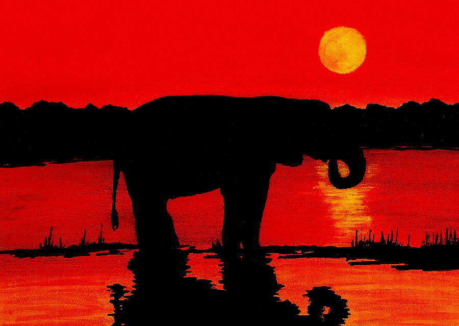 Elephant Silhouette African Sunset Painting