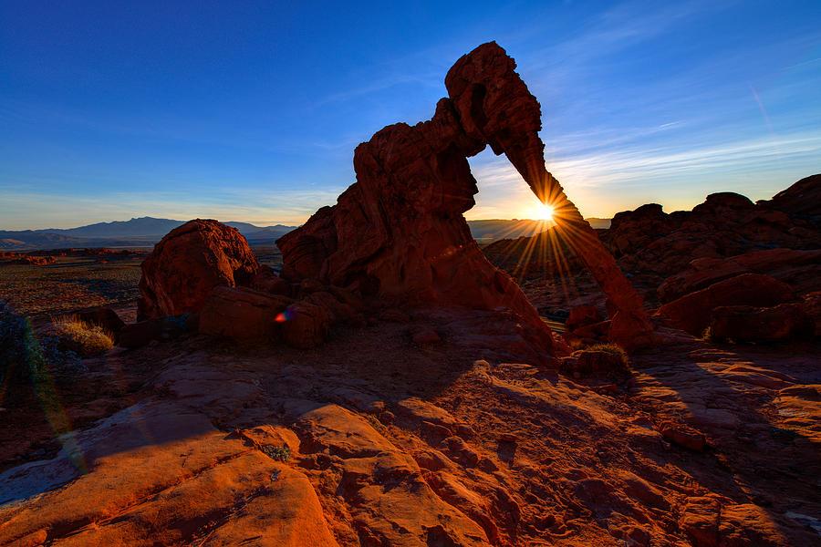 Park Photograph - Elephant Sunrise by Chad Dutson