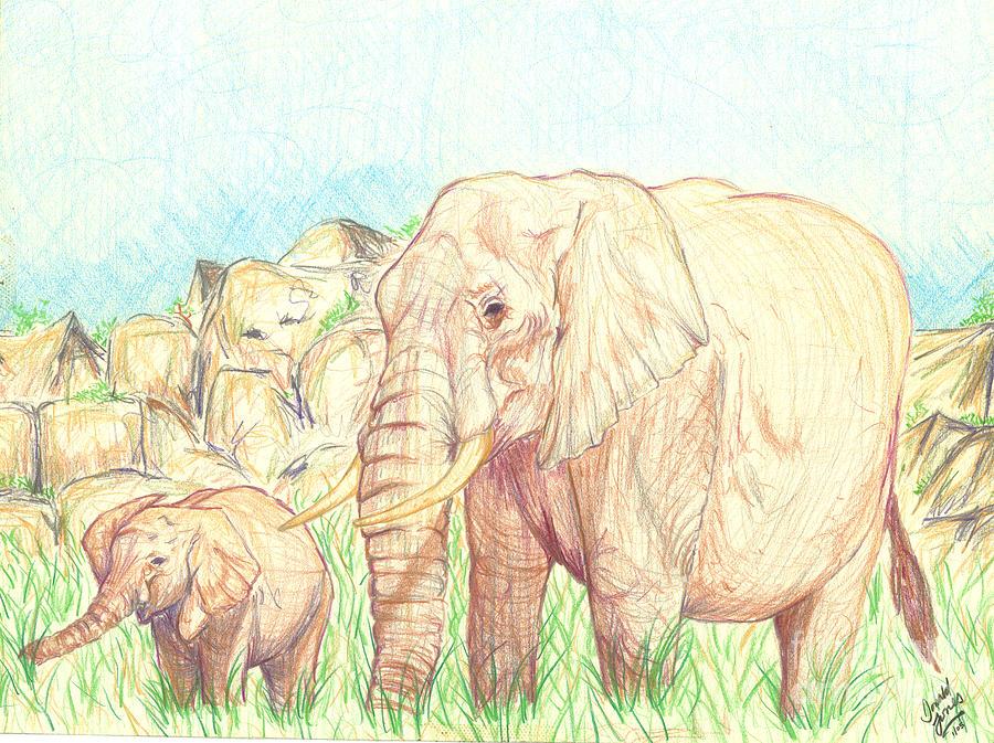 Elephants Drawing - Elephants by Donald Jones