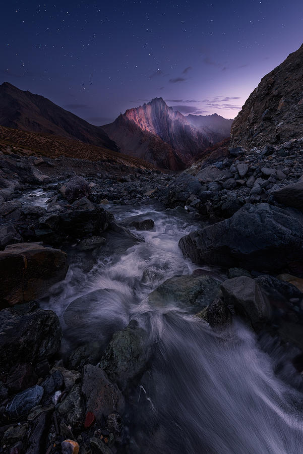 Ladakh Photograph - Elevated by Hillary Younger