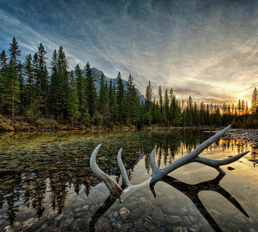 Elk Antler Adds Reflection To Mountain Photograph by Ascent Xmedia