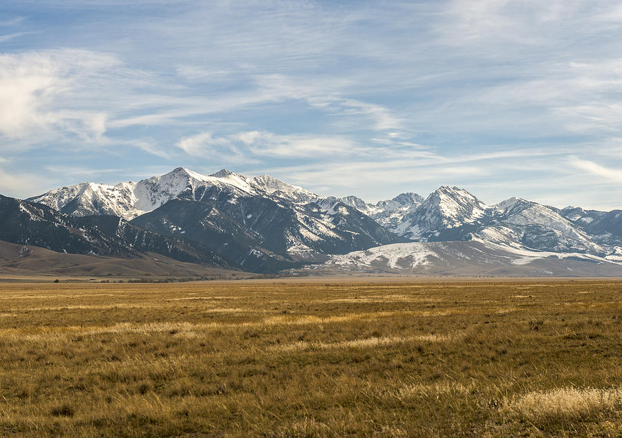 Shining Photograph - Elk Country by James Dudman