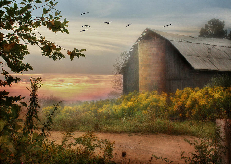 Barn Photograph - Elk County by Lori Deiter