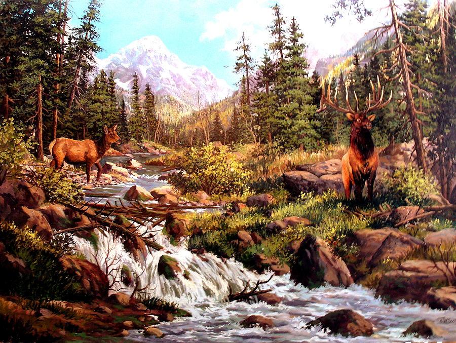 Elk Painting - Elk Meadows by W  Scott Fenton