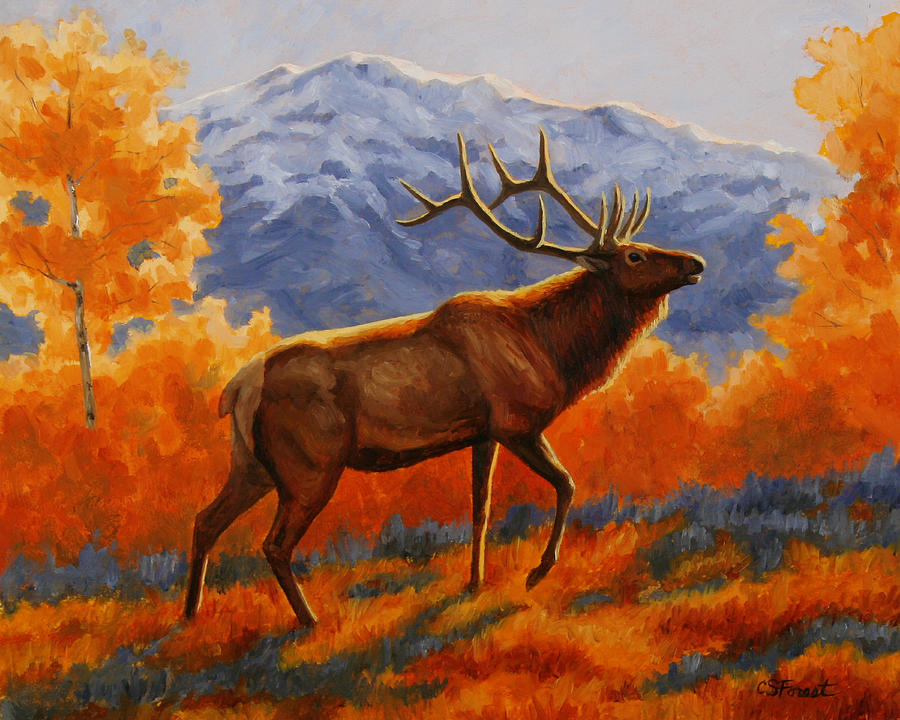 Deer Painting - Elk Painting - Autumn Glow by Crista Forest