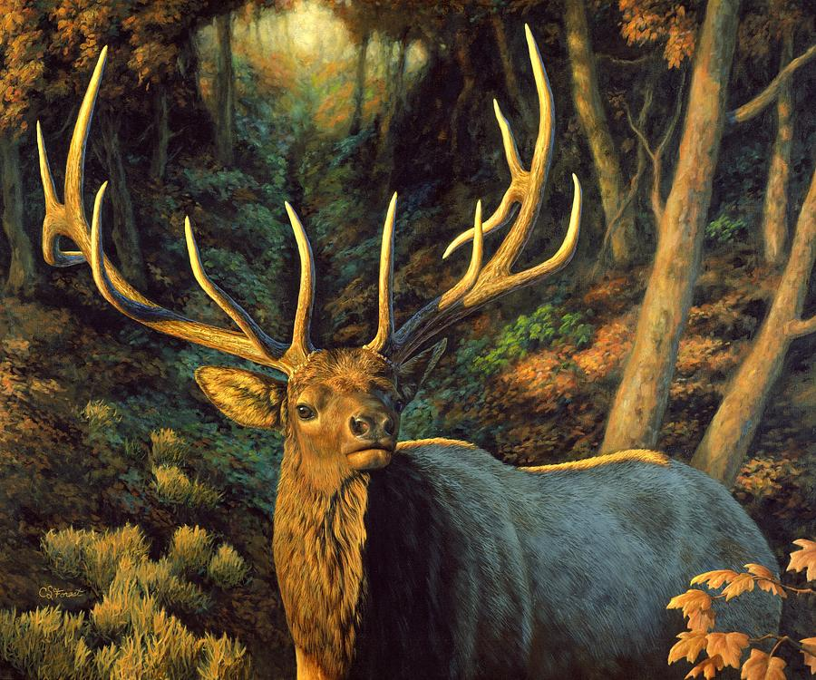 Elk Painting - Elk Painting - Autumn Majesty by Crista Forest