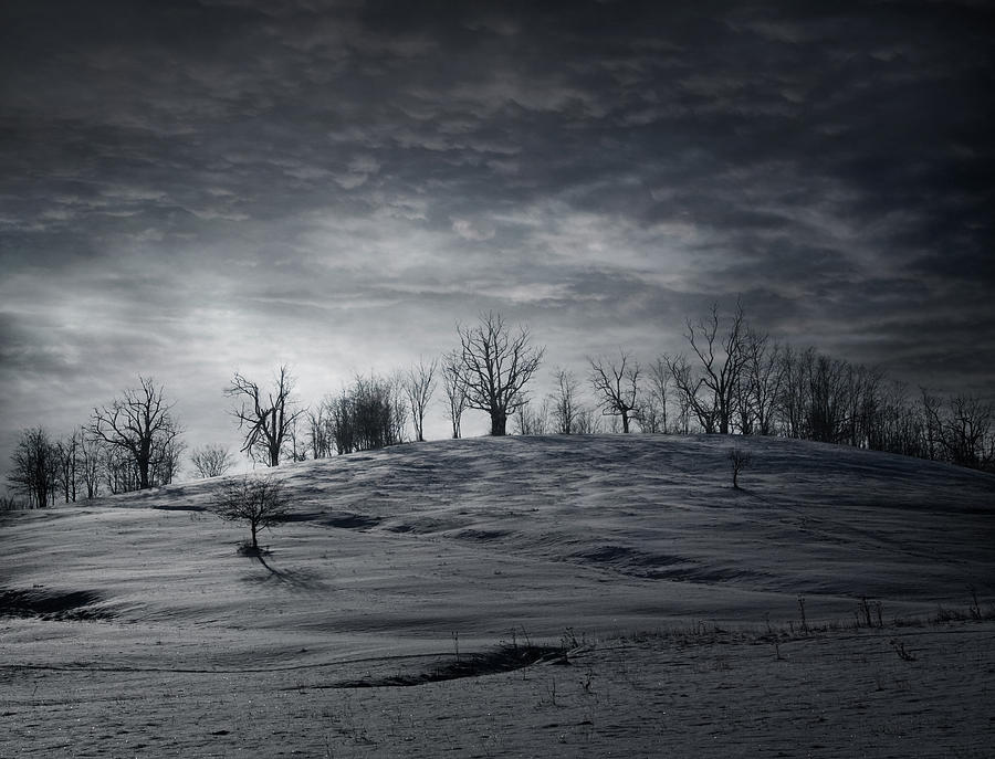 Winter Photograph - Elsewhere by Akos Kozari