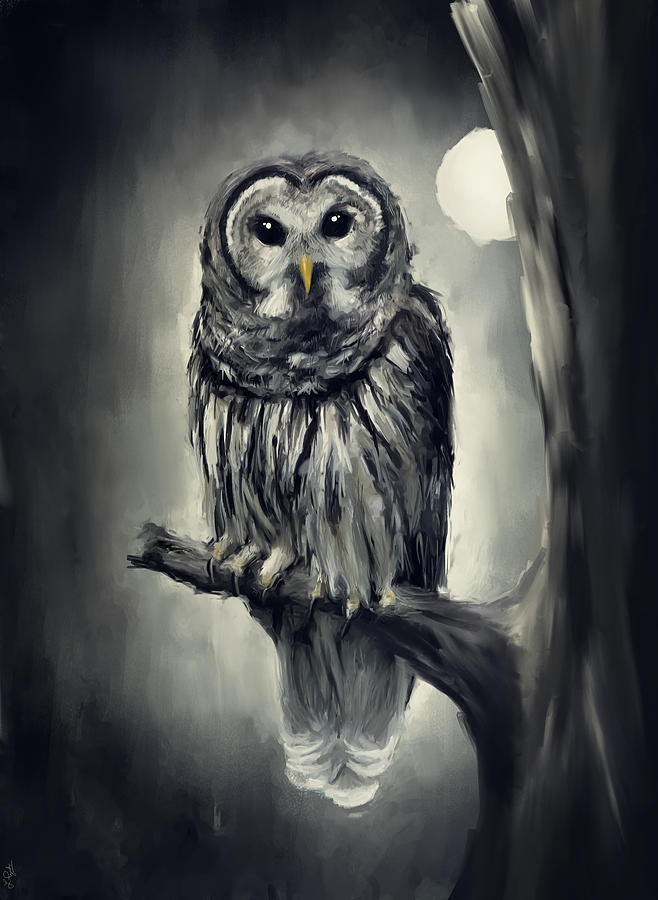 Owl Photograph - Elusive Owl by Lourry Legarde