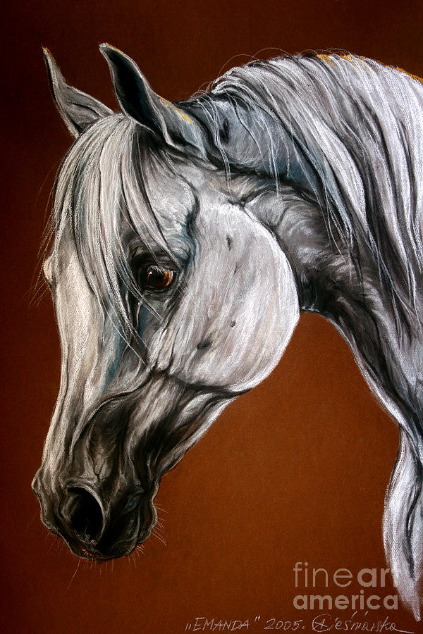 Arabian Drawing - Emanda by Angel  Tarantella