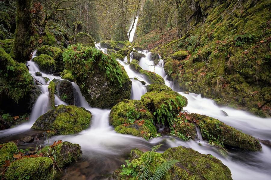 Columbia River Gorge Photograph - Emerald Falls by Brian Bonham