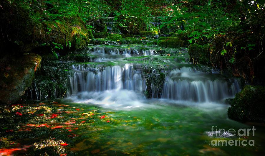 Emerald Flow by Wayne Stacy