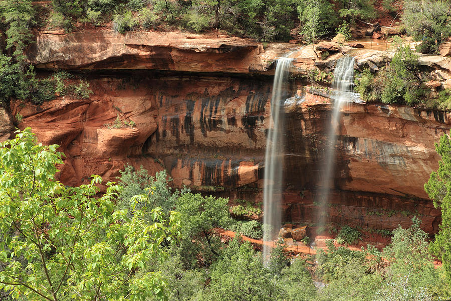 Zion National Park Photograph - Emerald Pool Falls by Darryl Wilkinson