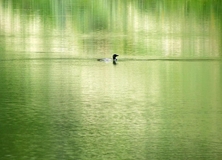 Lake Photograph - Emerald Water by Ramona Johnston