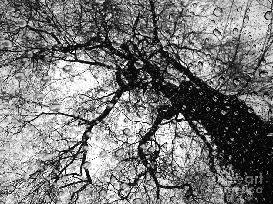 Black Photograph - Emotions by Angelo Merluccio