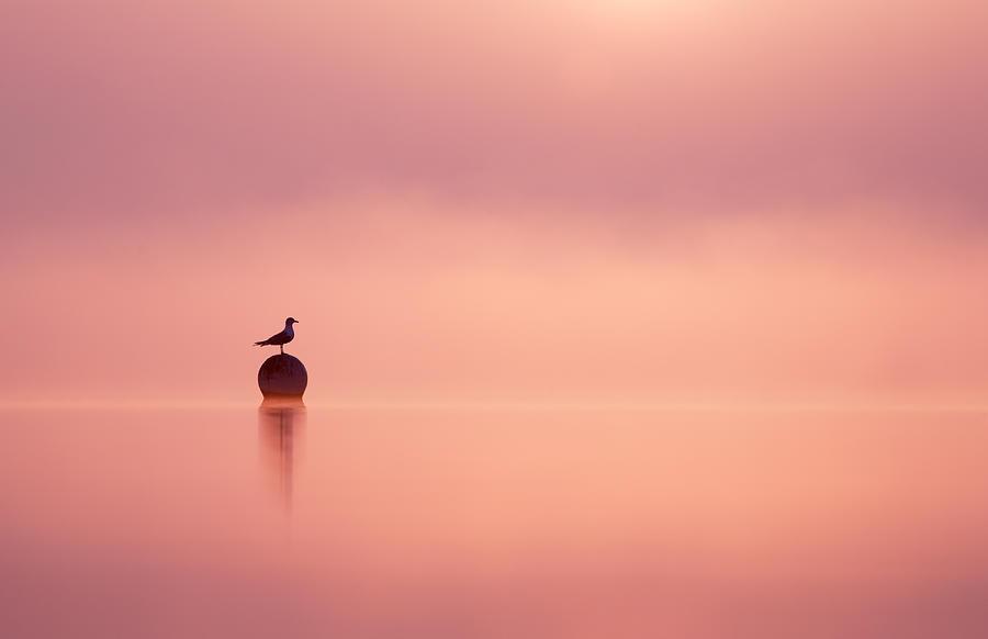 Sunrise Photograph - Empty Spaces by Roeselien Raimond