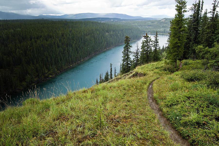 Canada Photograph - Empty Trail, Whitehorse, Yt, Canada by Dan Barham