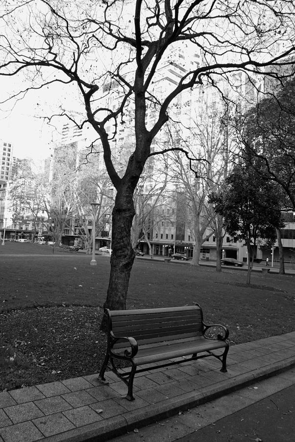 Park Photograph - Empty by Trevor McCabe