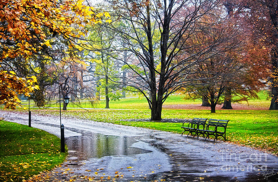Empty Walkway On A Beautiful Rainy Autumn Day Photograph by Nishanth Gopinathan