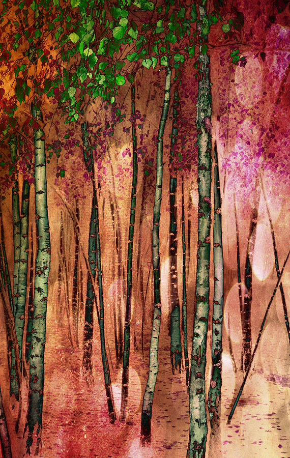 Forest Photograph - Enchanted Forest by Stephen Norris