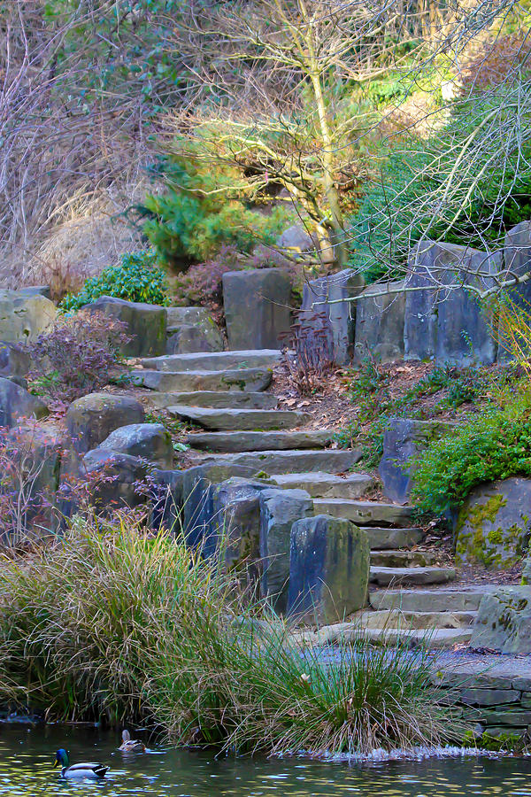 Stairs Photograph - Enchanted Stairway by Athena Mckinzie