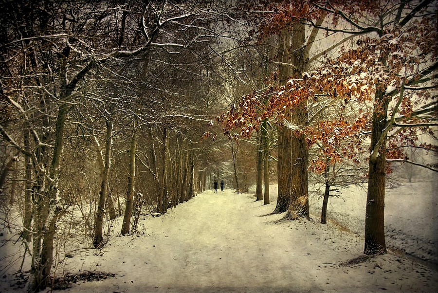 Enchanting Dutch Winter Landscape by Annie Snel
