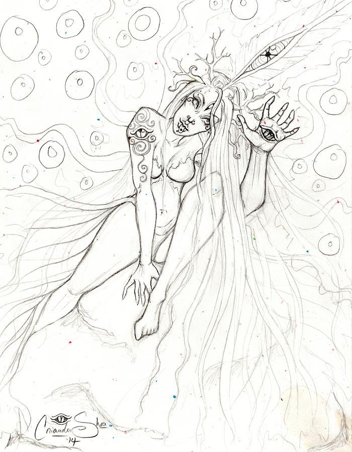 Firefly Drawing - Encounter by Coriander  Shea