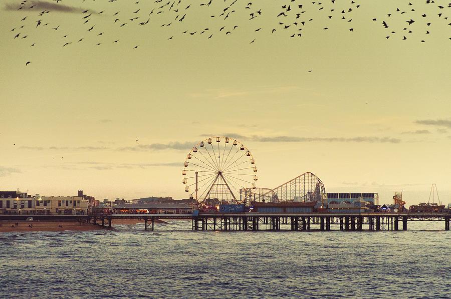 Beach Photograph - End Of Season by Nick Barkworth