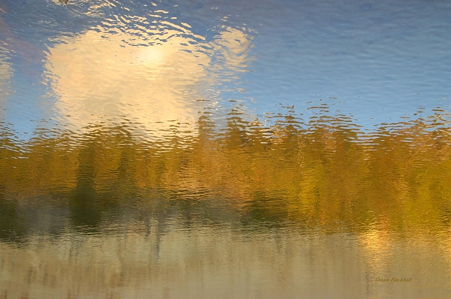 Water Photograph - End Of Summer by Donna Blackhall
