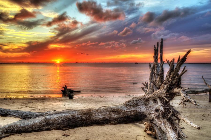 Jekyll Island Photograph - Endings by Greg and Chrystal Mimbs