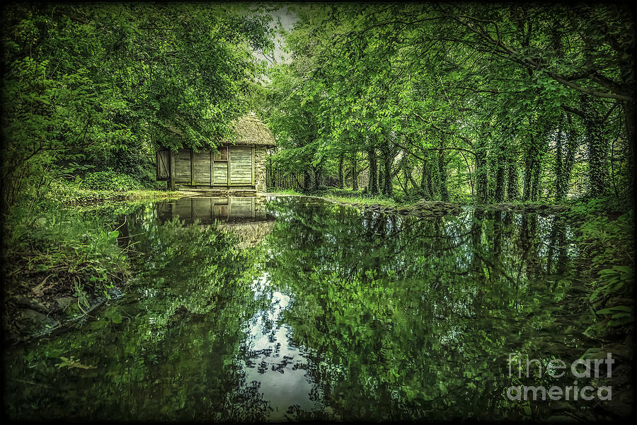 Endless Shades Of Green Photograph